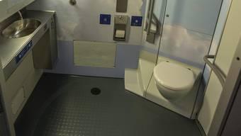 Gebre M.* soll Helen T.* in einem Zug-WC vergewaltigt haben.