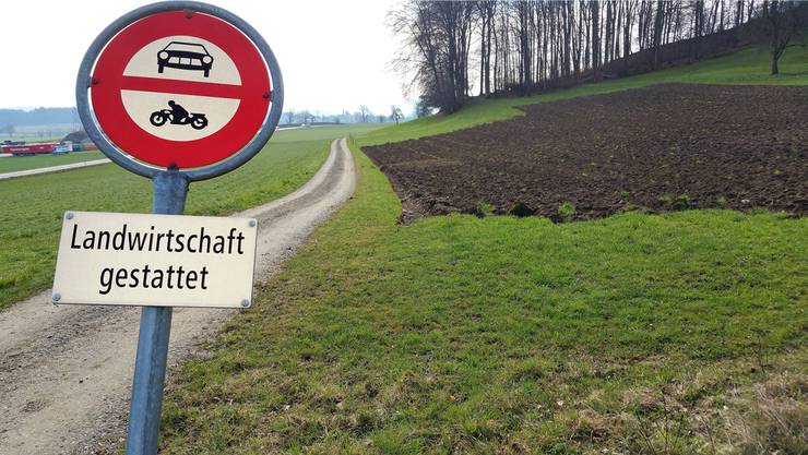 Die Zufahrt zu einer allfälligen künftigen Deponie Höll könnte ohne grossen Ausbau ab der Kantonsstrasse erfolgen.