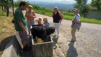 Vierzehnte Etappe: Von Siggenthal nach Böttstein