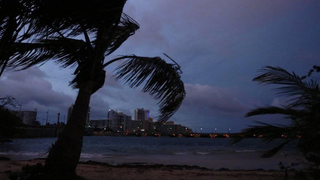 Palmen im Sturm in San Juan auf Puerto Rico - laut Gouverneur Ricardo Rossello ist «Maria» der «schlimmste Hurrikan in der Geschichte von Puerto Rico».