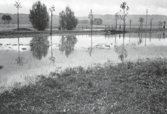 Durch die Überschwemmung des Limpaches werden grosse Landstrecken in einen See verwandelt. Aufnahme des Hochwassers vom 14. Oktober 1939  (Archivbild)