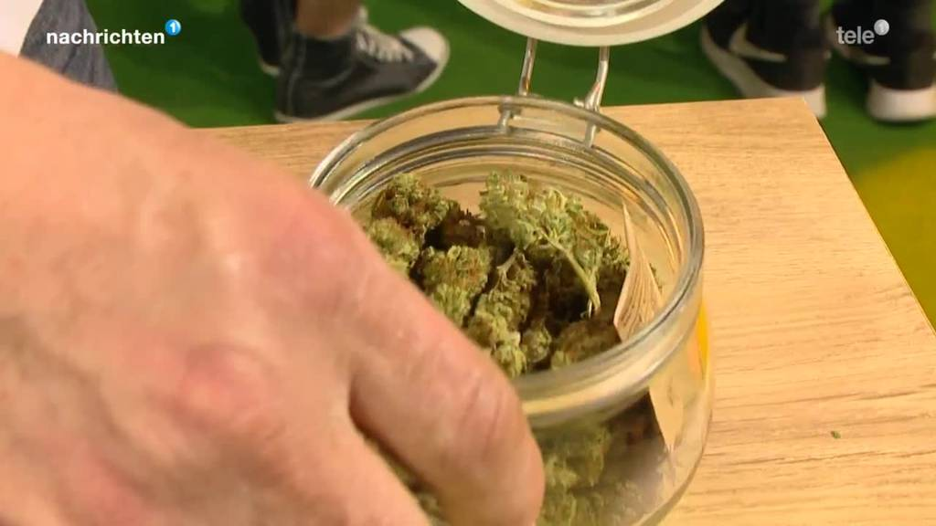 Mehrheit ist für Legalisierung von Cannabis