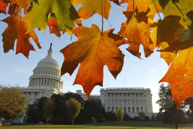 Da wollen sie alle hin: Das Kapitol in Washington, Zentrum der amerikanischen Macht.