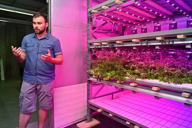 Das Start-up Growcer von Marcel Florian startete im Februar 2019 mit einer Testanlage im solothurnischen Gretzenbach.