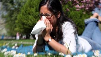 """Durch ihre Einträge in ein """"Allergietagebuch"""" können Allergiker selber zur schweizweit grösste Studie zu Pollenallergien beitragen. (Archivbild)"""