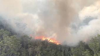 A supplied image obtained on Friday, December 4, 2020, of an aerial screen grab image of the K'gari (Fraser Island) fire captured on Wednesday, December 02, 2020. Tourists have been ordered to stay away from Queensland's world heritage-listed Fraser Island as a massive bushfire continues to test firefighters. (AAP Image/Supplied by QFES) NO ARCHIVING, EDITORIAL USE ONLY