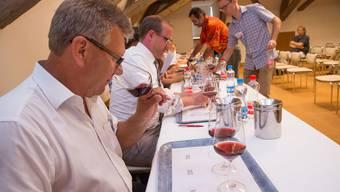 Die Juroren degustieren die drei Weine der Kategorie Pinot Noir.