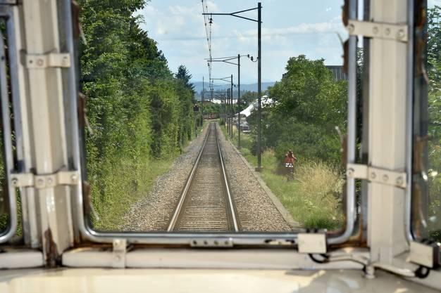 Zugsliebhaber säumten die 4,1 Kilometer lange Strecke, um den roten Pfeil vor die Linse zu kriegen.