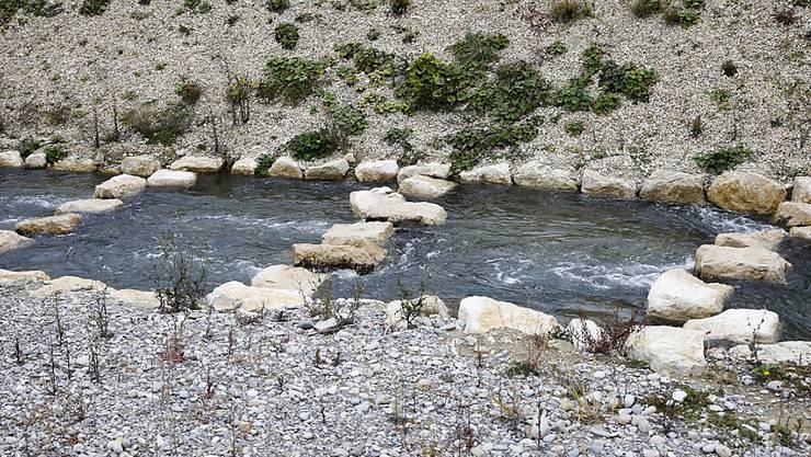 Ein Umgehungsgewässer führt wandernde Fische am Wasserkraftwerk Hagneck vorbei. (Archivbild)