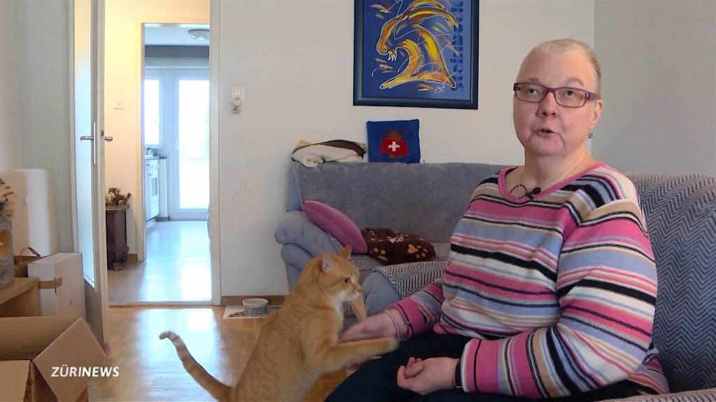Katzenbaum fängt Feuer: Auch Schwamendingen ist von Silvester-Zäusler betroffen
