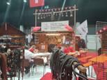 Viele Firmen aus der Schweiz an der Pferdemesse Eurocheval in Offenburg