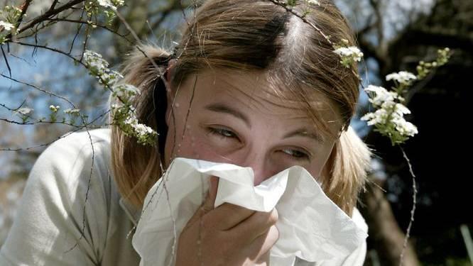 Die Allergiker hatten diese Woche besonders zu kämpfen.