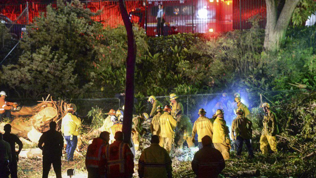 Böses Ende einer Hochzeitsfeier: Ein Baum stürzt auf die Festgesellschaft in der Nähe von Los Angeles.