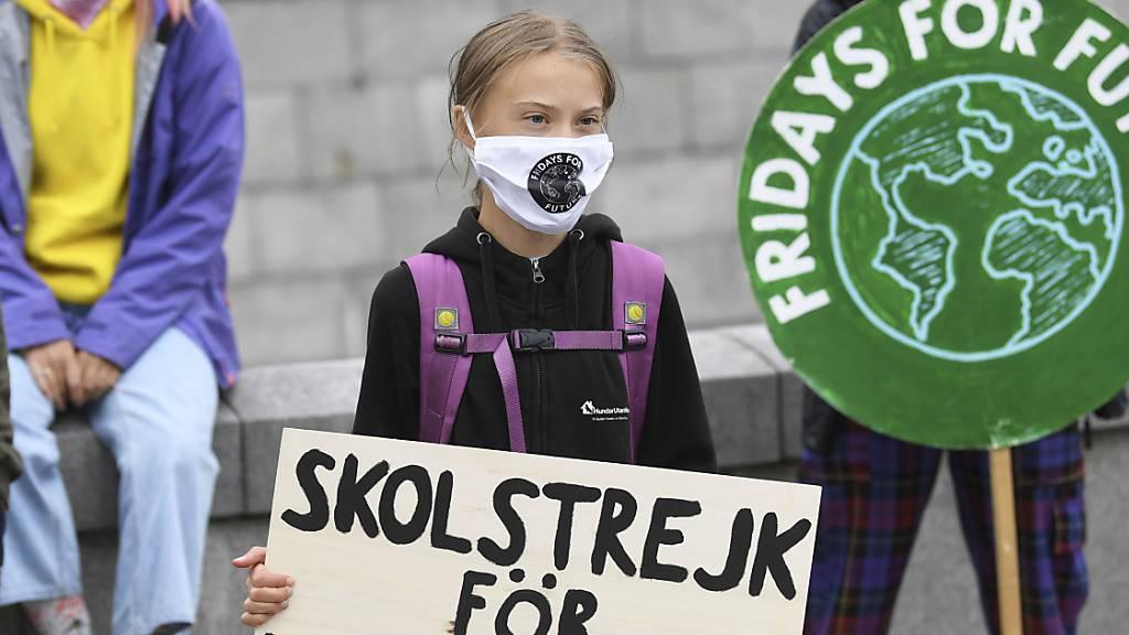 Greta Thunberg freut sich über Stopp von Raffinerie-Ausbau