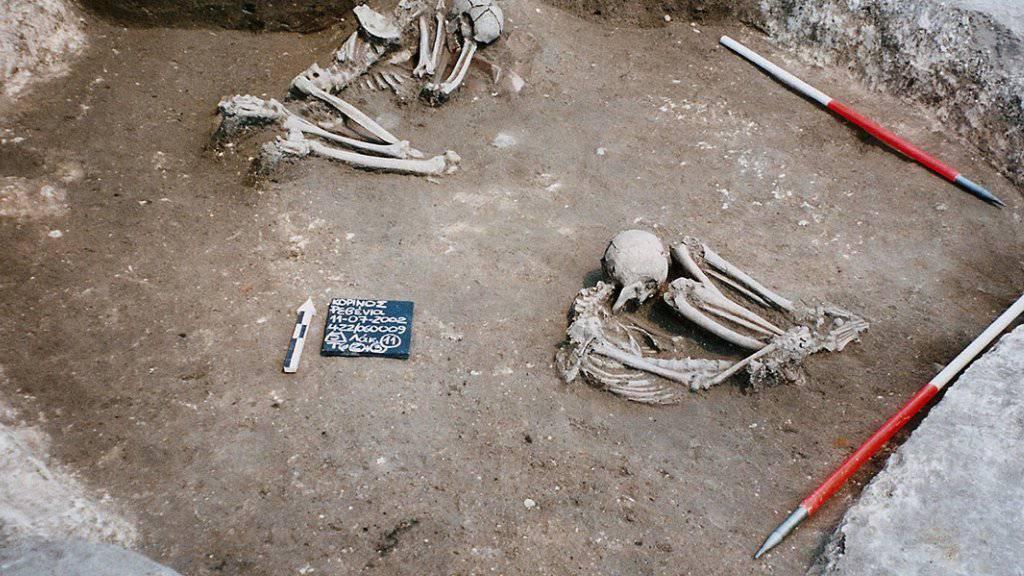 DNA-Analysen zeichnen die Abstammungslinie europäischer Bauern bis in die Ägäis nach. Die Erbinformation stammte unter anderem aus diesen 8500 Jahre alten Knochen, die in Revenia im Norden Griechenlands ausgegraben wurden.