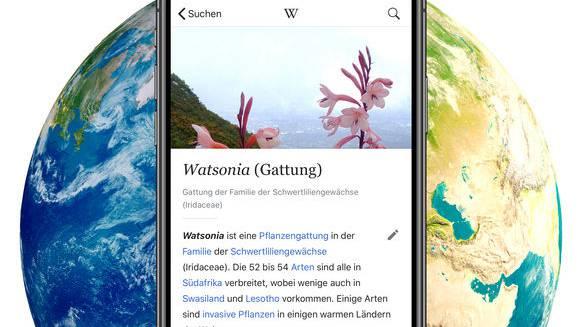 Wikipedia.de streikt.