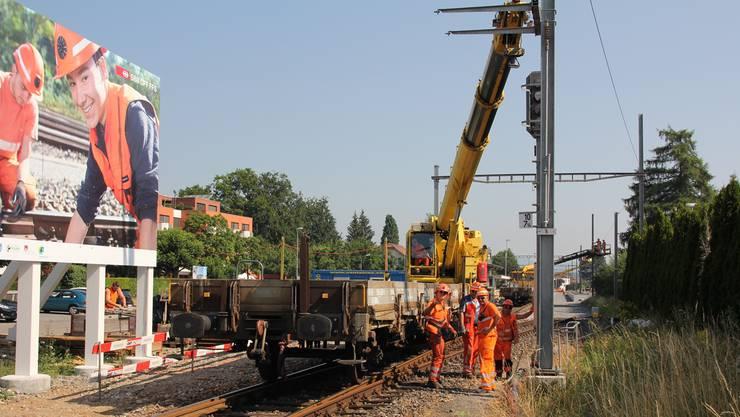 Gegenwärtig werden im Raum Kölliken mehr als 6 km Fahrleitung und 146 Masten ersetzt.