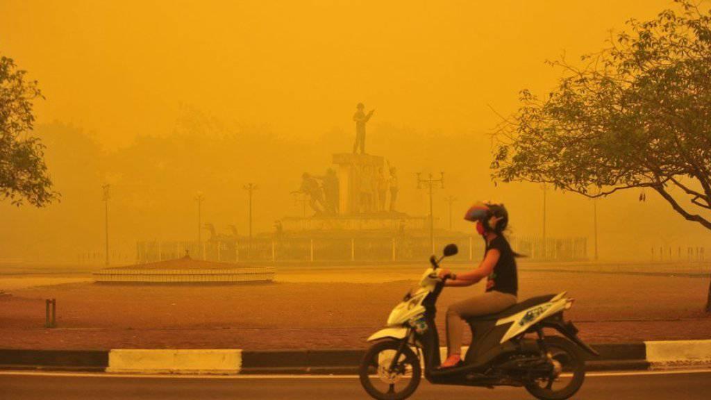 Eine Frau fährt in der indonesischen Provinz Zentral-Kalimantan mit ihrem Motorrad durch von illegalen Brandrodungen ausgelösten Smog. (Archiv)
