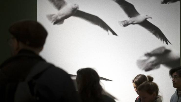 "Die Ausstellung ""Martine Franck"" im Musée de l'Elysée in Lausanne dauert vom 20. Februar bis 5. Mai 2019."