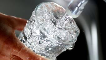 Trinkwasser mit Kolibakterien belastet