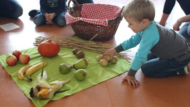 ernten von Früchte und Gemüse