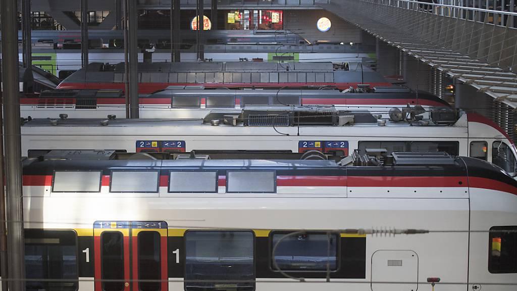 Luzerner Durchgangsbahnhof löst kontroverse Diskussionen aus