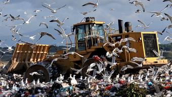 Nach EU-Recht völlig illegal: die Mülldeponie Malagrotta vor den Toren Roms. Seit dem vergangenen Oktober ist sie geschlossen. Chris Warde-Jones/Getty
