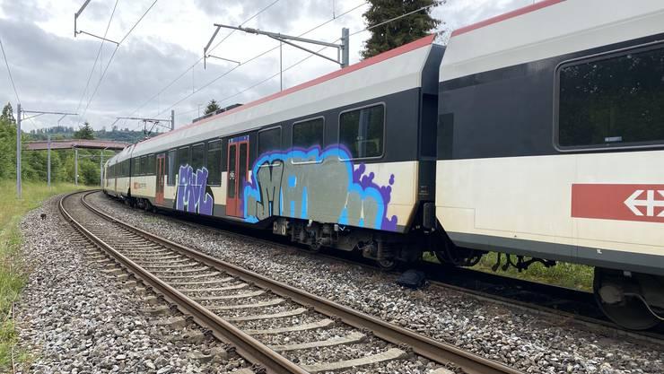 Drei Sprayer verunstalteten am Freitag eine Zugkomposition der SBB.