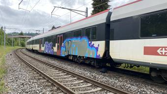 Sprayereien an Zug beim Bahnhof Wettingen (Juni 2020)