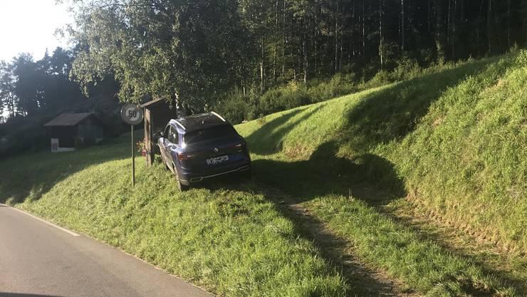 Ein Autofahrer unter Drogeneinfluss kam in Langenbruck von der Strasse ab.