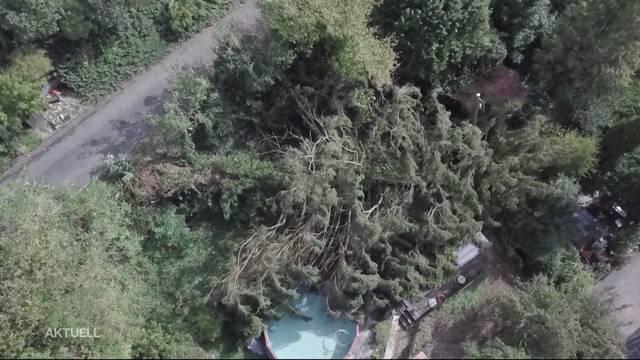 Sturm «Fabienne» fegte über Schweiz