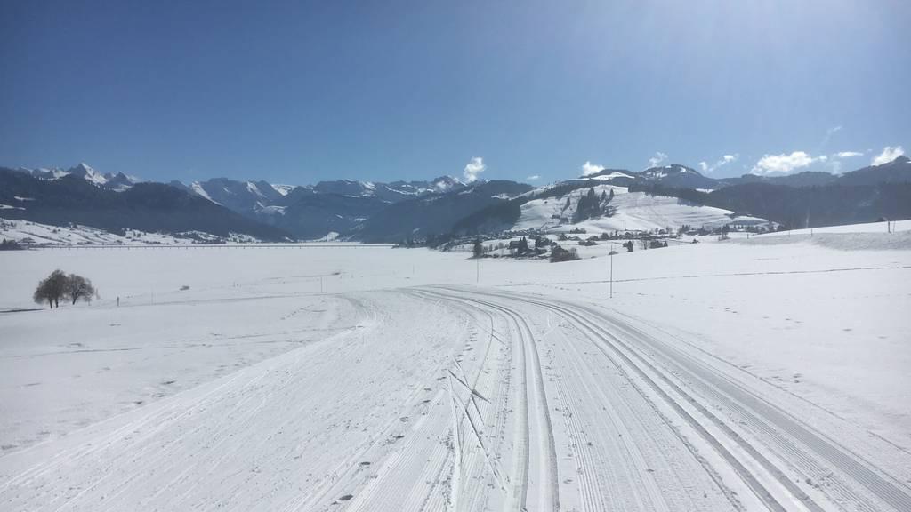 GPS-Zeitmessung statt Rennen im Pulk