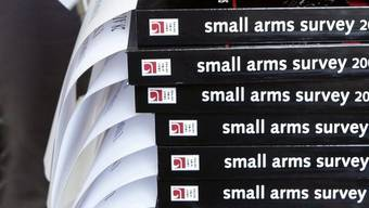 Mehrere Kleinwaffen-Berichte (Archiv)