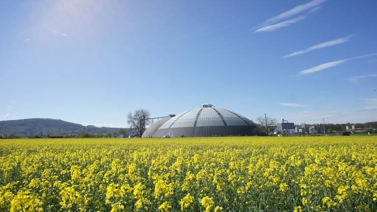 Saldome 2 in Rheinfelden wurde heute Montag offiziell eröffnet