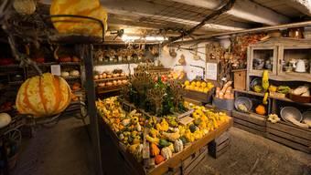 Der Stall ist Teil von Gebhards farbenprächtiger Kürbiswelt.