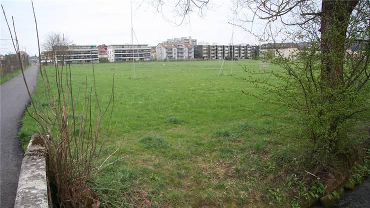Noch zeugen Bauprofile von den unrealisierten Plänen beim Wildbach.