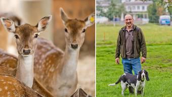 Willi Lüscher besucht mit Hund Alex täglich die Hirschgehege und schaut nach dem Rechten.