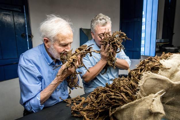 Heinrich Villiger in Brasilien auf Tabakeinkauf für seine kleine Zigarrenmanufaktur Villiger do Brasil in der Nähe der Stadt Salvador de Bahia.