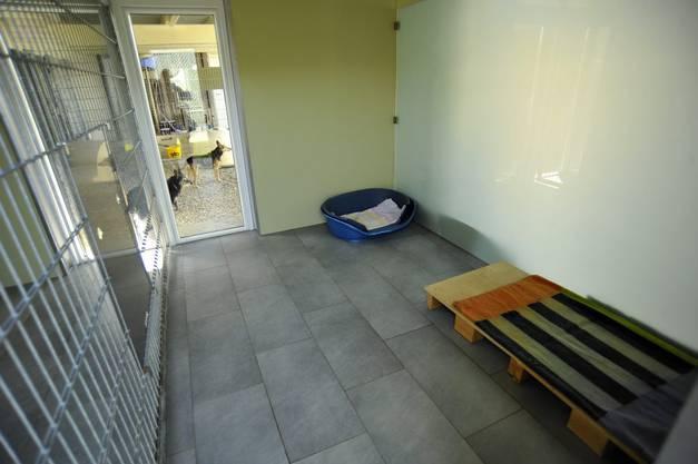 Das Tierheim bietet Platz für Katzen und Hunde.