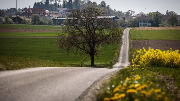 Der Rüttenenweg ist einer der Flurwege, die in erster Priorität saniert werden.