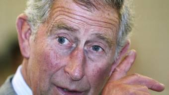 Prinz Charles steht in der Kritik der Umweltbehörden (Archiv)