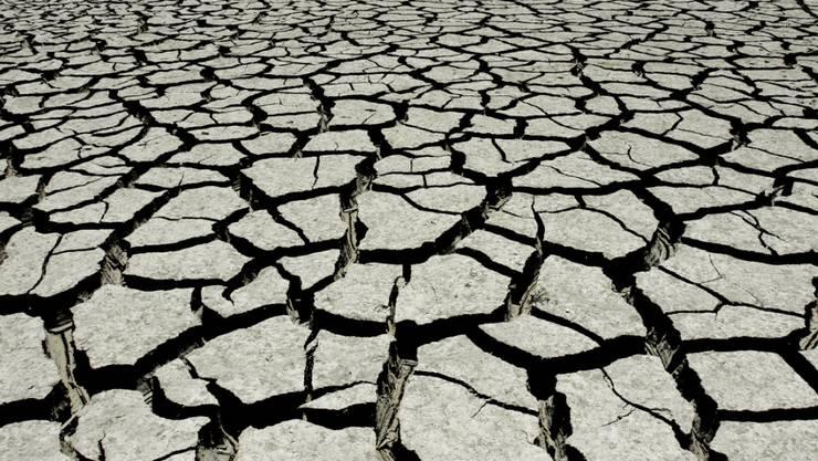 Ein besonders hohes Risiko geht laut dem WEF-Bericht vom Klimawandel aus. (Archivbild)