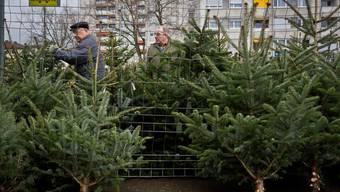 Redaktorin Sabine Altorfer hat einmal Weihnachtsbäume verkauft. (Symbolbild)