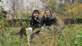Kraut kreuz und quer: Urban Agriculture an der Basler Missionsstrasse. Zoé Beutler und Bastiaan Frich wollen mit ihren Gärten nun aufs Land expandieren.