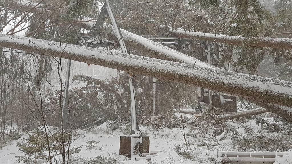 Verwüstung im Skigebiet Wildhaus: «Der Lift ist zerstört»