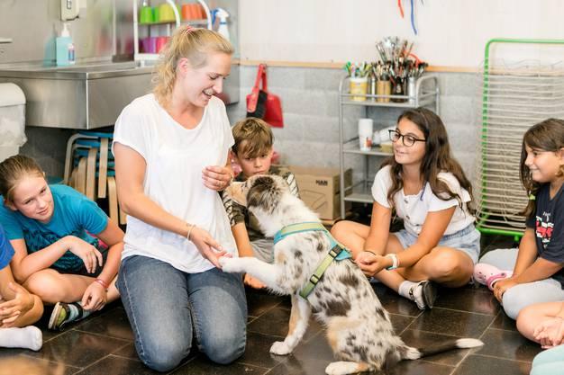 Die Hündin begleitet Heilpädagogin Rochelle Alten in bis zu drei Wochenlektionen pro Klasse.