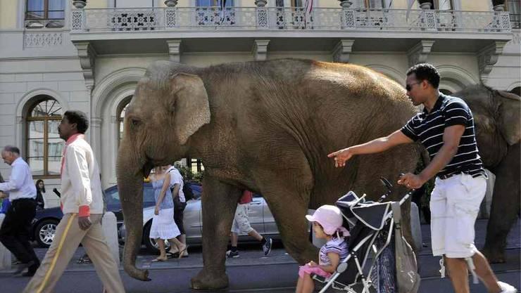 Elefantenparade in Basel