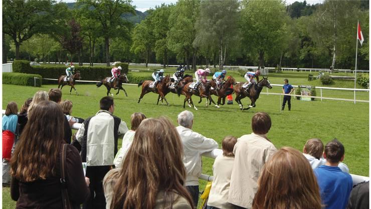 Action auf der Pferderennbahn im Schachen: Die Elite der Schweizer Traber versammelt sich im Schachen.