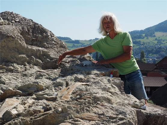 «Wir werden ihn möglichst schnell herausholen»: Grabungsleiter Ben Pabst vor dem Prachtexemplar eines Plateosauriers, als er und sein Team den Fund publik machten.