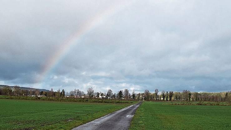 Der Regenbogen beim Murimoos entschädigt für all den Regen.
